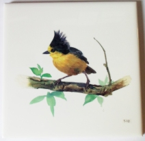 Photo Yellow Bird Waterproof Tile Transfer