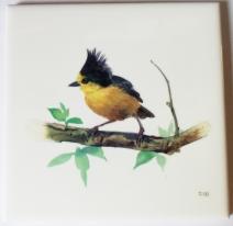 Photo Yellow Bird Waterproof Tile Transfer