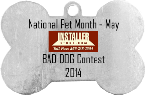 Installerstore Bad Dog Photo Contest