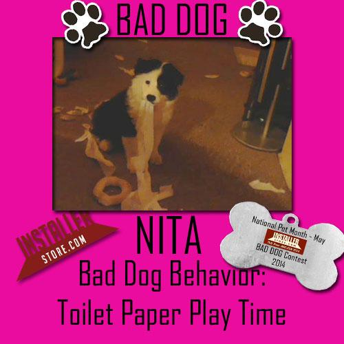 Bad Dog Nita
