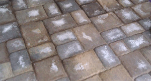 Patio-Pavers-Efflorescence
