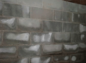 Installerstore-Efflorescence-Wall