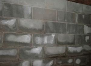 Installerstore-Efflorescence-Wall