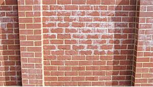 Efflorescence-Brick-Wall